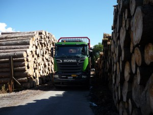 Scania-Iltios-004-1024x768